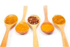 Spices in the spoons Royalty Free Stock Images