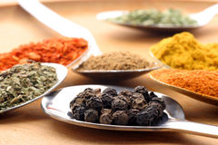 Spices in spoons Stock Photo
