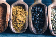 Spices in the spoons Stock Image