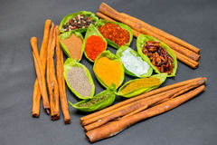 Spices on spoons Royalty Free Stock Photo