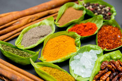 Spices on spoons Stock Photo