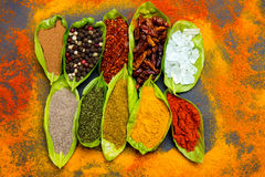 Spices on spoons Stock Image