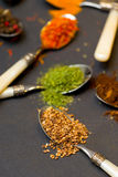 Spices on spoons Stock Photography