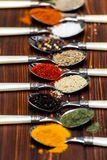 Spices on spoons Stock Photos