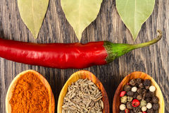 Spices in spoons with red pepper. Still life background Stock Photo
