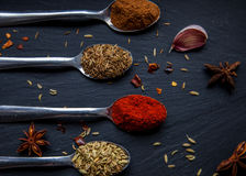Spices on spoons. Selection of spices on a slate board Stock Photo