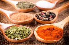 Spices in spoons Stock Images