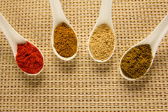 Spices in spoons on the table. Stock Photography