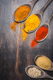 Spices in the spoons Turmeric, chili, coriander, masala. Royalty Free Stock Photography