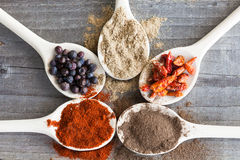 Spices on spoons Royalty Free Stock Image