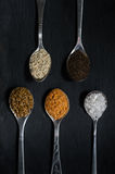 Spices in spoons. The view from the top Royalty Free Stock Photography