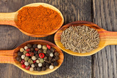 Spices in spoons. On wooden background Stock Image
