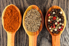 Spices in spoons. On wooden background Royalty Free Stock Image