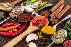 Spices in spoons on wooden background. Stock Images