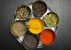 Spices in stainless-steel bowls Royalty Free Stock Images