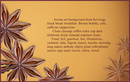 Spices: star anise on a brown background Royalty Free Stock Image