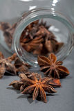 Spices, star anise, cardamom and coriander. Royalty Free Stock Images