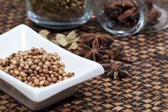Spices, star anise, cardamom and coriander. Royalty Free Stock Photography