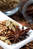 Spices, star anise, cardamom and coriander. Royalty Free Stock Image