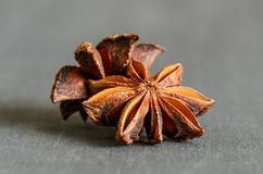 Spices; star anise stock images