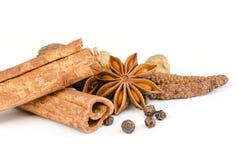 Spices. Stock Photos