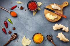 Spices on stone grey background Royalty Free Stock Photo