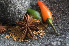 Spices in stone mortar Royalty Free Stock Photos