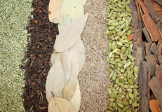 Spices stripes Stock Photos