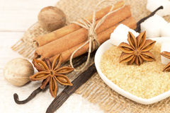 Spices and sugar Royalty Free Stock Images