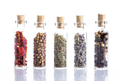 Spices talisman Stock Images