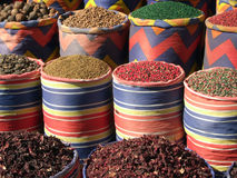 Spices and tea Royalty Free Stock Photos