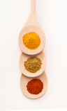 Spices on Three Spoons Stock Image