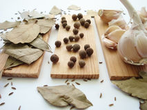 The spices - thyme, cumin and garlic. Allspice, pimento Stock Images