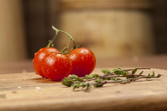 Spices and tomatoes. Royalty Free Stock Image