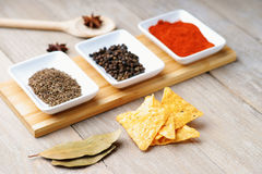 Spices and tortilla chips Royalty Free Stock Photo