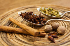 Spices on tray Stock Image