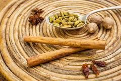 Spices on tray Royalty Free Stock Photos
