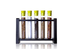Spices in tubes Royalty Free Stock Images