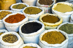 Spices in Tunisia Stock Images