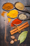 Spices Turmeric, chili, cinnamon, coriander, bay leaf, nutmeg. Stock Image