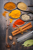 Spices Turmeric, chili, cinnamon, coriander, bay leaf, nutmeg. Stock Images