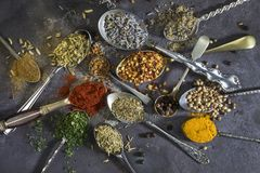 Spices used to add flavor to cooking. Stock Image
