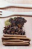 Spices with utensil on wood background Stock Images