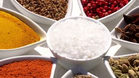 Spices. Various Indian. Spice and herbs rotate. Assortment of Seasonings, condiments. Cooking ingredients, flavor. 4K. Video Beautiful view stock video footage