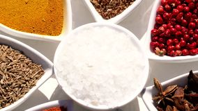 Spices. Various Indian. Spice and herbs rotate. Assortment of Seasonings, condiments. Cooking ingredients, flavor. 4K. Video Beautiful view stock footage