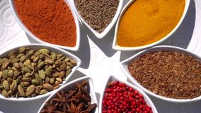 Spices. Various Indian. Spice and herbs rotate. Assortment of Seasonings, condiments. Cooking ingredients, flavor. 4K