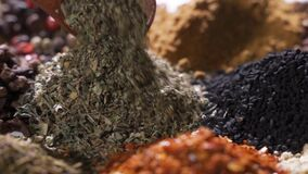 Spices. Various Indian Spices on wooden table. Assortment of Seasonings, condiments. Cooking ingredients, flavor. Slow