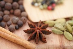 Various seasonings on wooden background. Spices. Various seasonings for cooking on wooden background Stock Photo