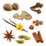 Spices, vector icons Stock Photos