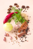 Spices and vegetables. Stock Images